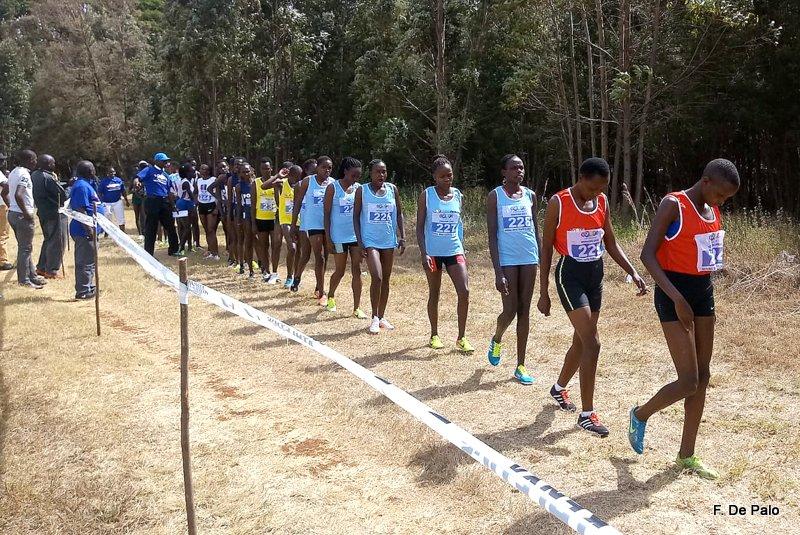 Eldoret3